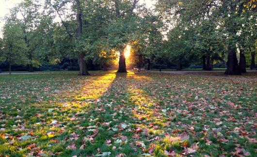 L'últim raig de sol a Hyde Park