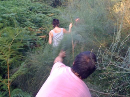 Per enmig de la selva